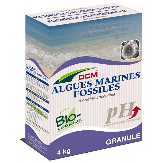 Algues marines 4kg de DCM - Engrais et terreaux dans Granule
