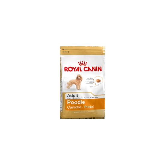 Caniche/poodle 1.5kg de Royal Canin - Croquette chien et chat dans Royal canin pour chiens