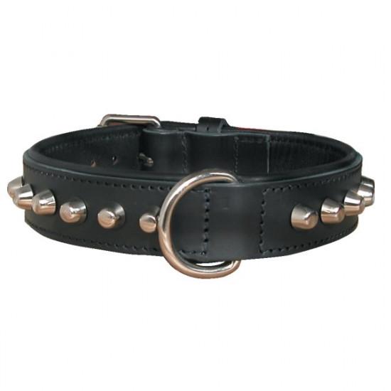 /collier bouledog 40cm 30mm nn de Zolux - Produit pour animaux dans Colliers