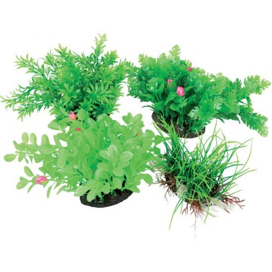 Aeroplant dif. vert m de Zolux - Produit pour animaux dans Plantes