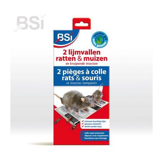 Pieges a colle souris/ratsx2 de BSI -Bio service international - traitement pour plantes dans Raticide / souricide