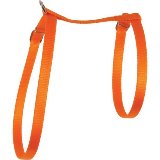 Harnais nylon chat orange