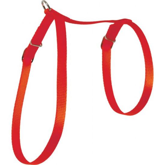 Harnais nylon chat rouge de Zolux - Produit pour animaux dans Laisses collier harnais pour chats