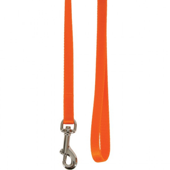 Laisse nylon chat orange