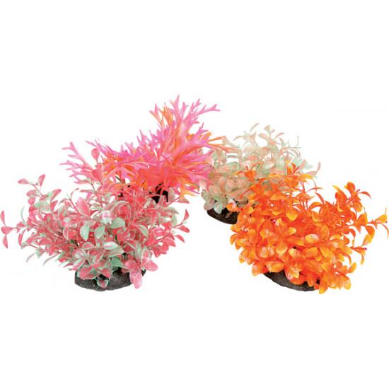 Aeroplant dif. color m de Zolux - Produit pour animaux dans Plantes