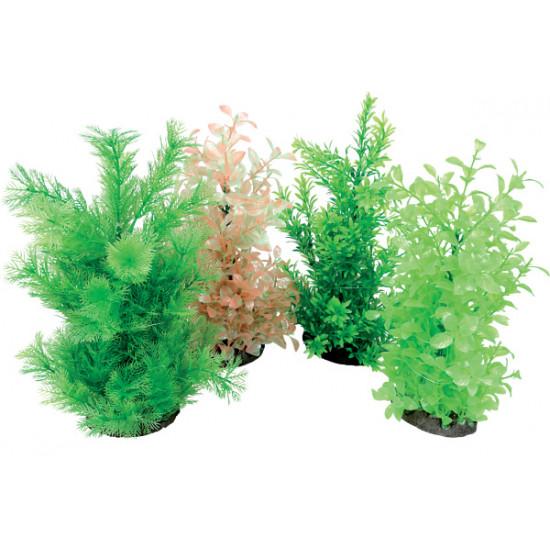 Aeroplant dif. vert l de Zolux - Produit pour animaux dans Plantes