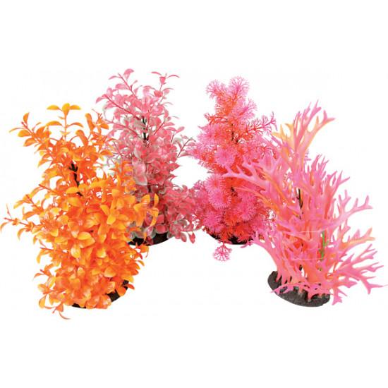 Aeroplant dif. color l de Zolux - Produit pour animaux dans Plantes