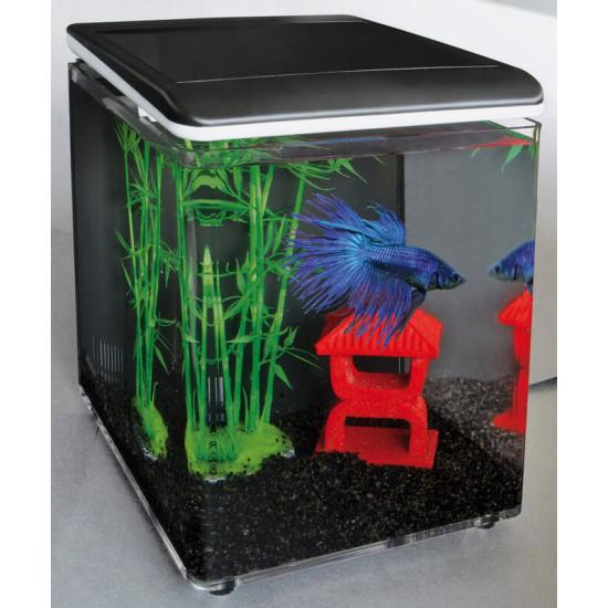 Aquarium home 8 noir de Superfish - Aquadistri - accessoires pour aquarium et bassin dans - de 60 Litres
