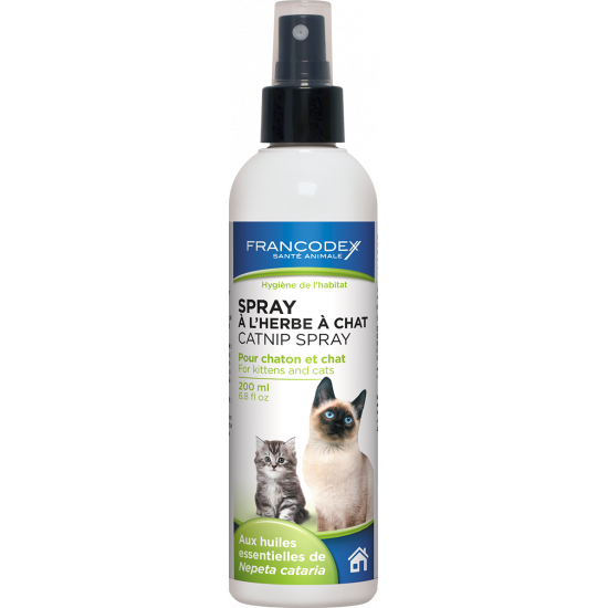 Spray herbe pour chat