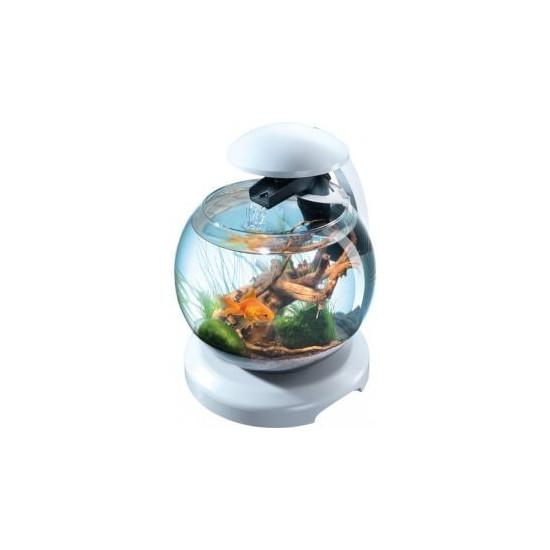 Tetra cascade globe blanche de Tetra - Tetra pond - Nourriture pour poissons dans Petit Aquarium déco