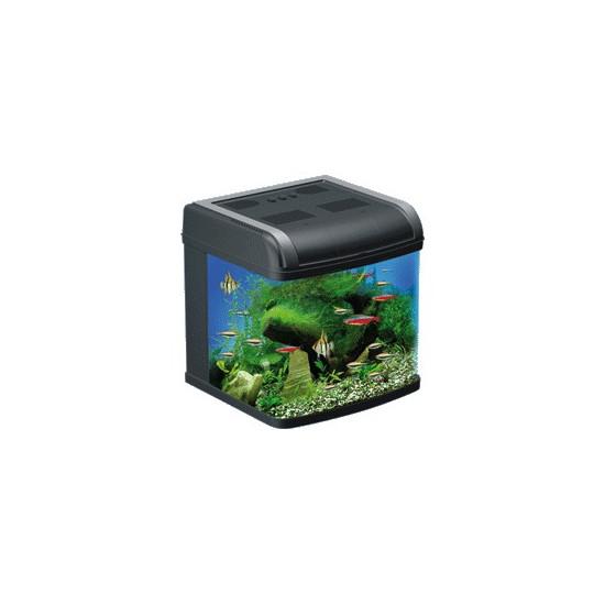 Aqua pacific 50