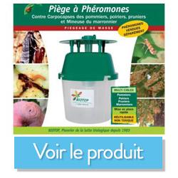 entonnoir biotop phéromone pyrale du buis