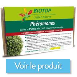 phéromone pyrale du buis biotop